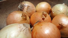 Onions in wooden tray Royalty Free Stock Photo