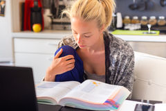 Online courses and study programmes. Adult woman in her casual home clothing working and studying remotly from her small flat in the morning. Home kitchen in Stock Photography
