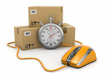 Online express delivery. Royalty Free Stock Images