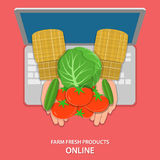 Online farm products flat vector concept. Royalty Free Stock Image