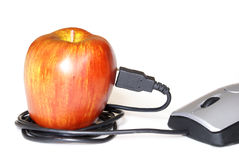 Online Learning Concept. A computer mouse plugged into an apple for an online learning concept stock photo