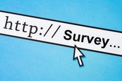 Online onderzoek Stock Afbeelding
