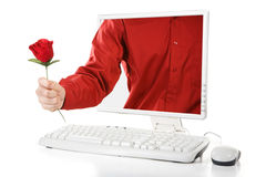 online-rose valentin Royaltyfri Foto
