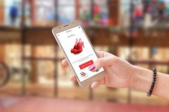 Online shoping with commerce app or web site. Woman holding modern smart phone. Shopping center in background Royalty Free Stock Photo