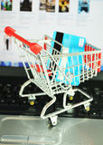 online-shopping royaltyfri bild