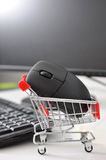 online-shopping Royaltyfri Foto