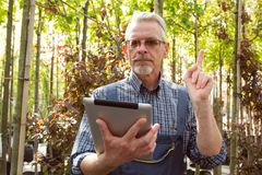 Online Store Manager with a clipboard in hands on a background of a greenhouse royalty free stock photos