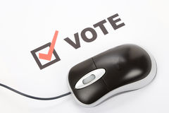 Online Voting royalty free stock photos