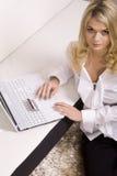 Onlineeinkaufen Lizenzfreie Stockbilder