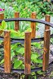 Ono fechtuje się dla ogrodowych krzaków Zdjęcie Royalty Free