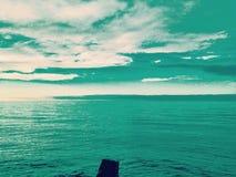 Ono przygląda się Nad morzem Zdjęcie Royalty Free