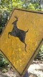 Ono wystrzega się jeleni signboard Zdjęcie Stock