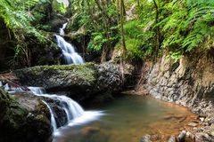 Onomea waterfall, Hawaiian Tropical Botanical Garden, Hili, Hawaii. Surrounded by tropical forest, pool and rocks below. Onomea waterfall cascading through royalty free stock photos