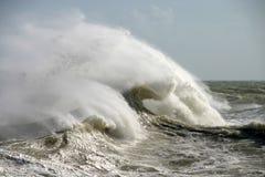 onormal wave royaltyfri bild
