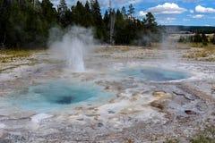 Onregelmatige geiser Yellowstone Stock Fotografie