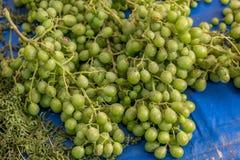 Onrijpe druiven Stock Fotografie