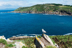 Ons Island In Galicia, Spain Stock Images