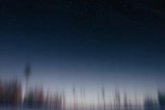 Onscherp bos bij zonsondergang royalty-vrije stock afbeeldingen