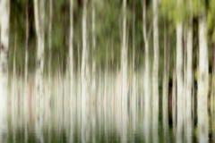 Onscherpe bomen door water Royalty-vrije Stock Foto