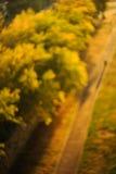 Onscherpe zonsondergangachtergrond, bomen en weg met schaduwcijfer Royalty-vrije Stock Foto's