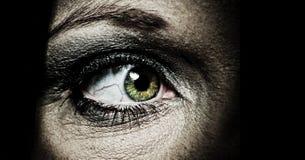 ont öga Fotografering för Bildbyråer