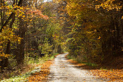 Ontario Fall Country Road. Fall colours in Southern Ontario. The fall colours are legendary. Fall can be seen as a beautiful time when everything in nature is Royalty Free Stock Images