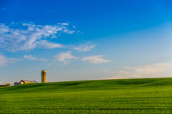 Ontario Farm Land. Farm land in South Western Ontario Canada with blue sky and green field royalty free stock photo