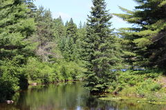Ontario utomhus Royaltyfria Foton