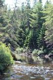 Ontario utomhus Arkivbilder