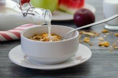 Ontbijt met droge vruchten en melk stock afbeelding