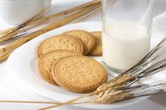 Ontbijt met melk Stock Fotografie