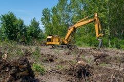 Ontbossing van bosdieGraafwerktuig voor het graven van logboeken en wortels wordt gebruikt stock foto