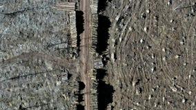 Ontbossing, vernietigd bos na orkaan stock footage