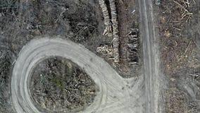 Ontbossings luchtfoto Vernietigd bos tijdens het oogsten stock video
