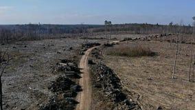 Ontbossings luchtfoto Vernietigd bos voor het oogsten van hout stock footage