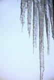 Ontdooiende ijskegels royalty-vrije stock foto
