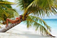 Onthaal aan Eiland van Paradijs! Royalty-vrije Stock Foto's