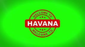 Onthaal aan HAVANA Signed Stamping Text Wooden-Zegelanimatie stock illustratie