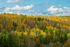 Ontonagon river valley, autumn Royalty Free Stock Photo