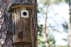 Ontop fait main de volière d'un tronc d'arbre Photos libres de droits