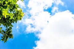 Ontruim blauwe hemel als achtergrond, de muurdocument van de hemelwolk, zonneschijndag, het behang van de pastelkleurhemel Royalty-vrije Stock Foto