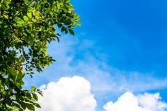 Ontruim blauwe hemel als achtergrond, de muurdocument van de hemelwolk, zonneschijndag, het behang van de pastelkleurhemel Royalty-vrije Stock Afbeeldingen