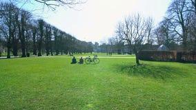 Ontruim blauwe hemel over groen park, paar openlucht rusten op weekend, kalmte stock afbeeldingen