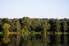 Ontruim meer in de zonneschijn waarin de bomen van de kust nadenken royalty-vrije stock fotografie