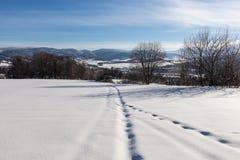 Ontruim zonnige hemel met een mooi landschap op sneeuw behandelde bomen in een vluchtige Kerstmisochtend in de bergen royalty-vrije stock afbeelding