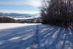 Ontruim zonnige hemel met een mooi landschap op sneeuw behandelde bomen in een vluchtige Kerstmisochtend in de bergen stock foto's