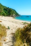 Ontruimend op een strand, abel tasman nationaal park, Nieuw Zeeland 2 stock afbeeldingen