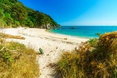 Ontruimend op een strand, abel tasman nationaal park, Nieuw Zeeland 3 royalty-vrije stock foto