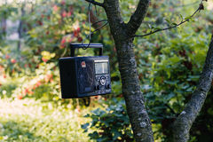 Ontspan in de tuin met radio Royalty-vrije Stock Foto
