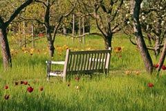 Ontspan in een park Stock Afbeelding